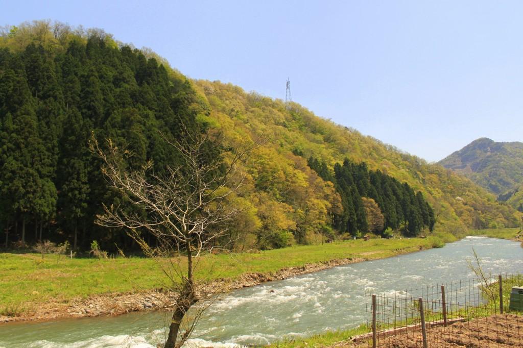 5月3日(日)〜6日(水)は休業日とさせて頂きます。