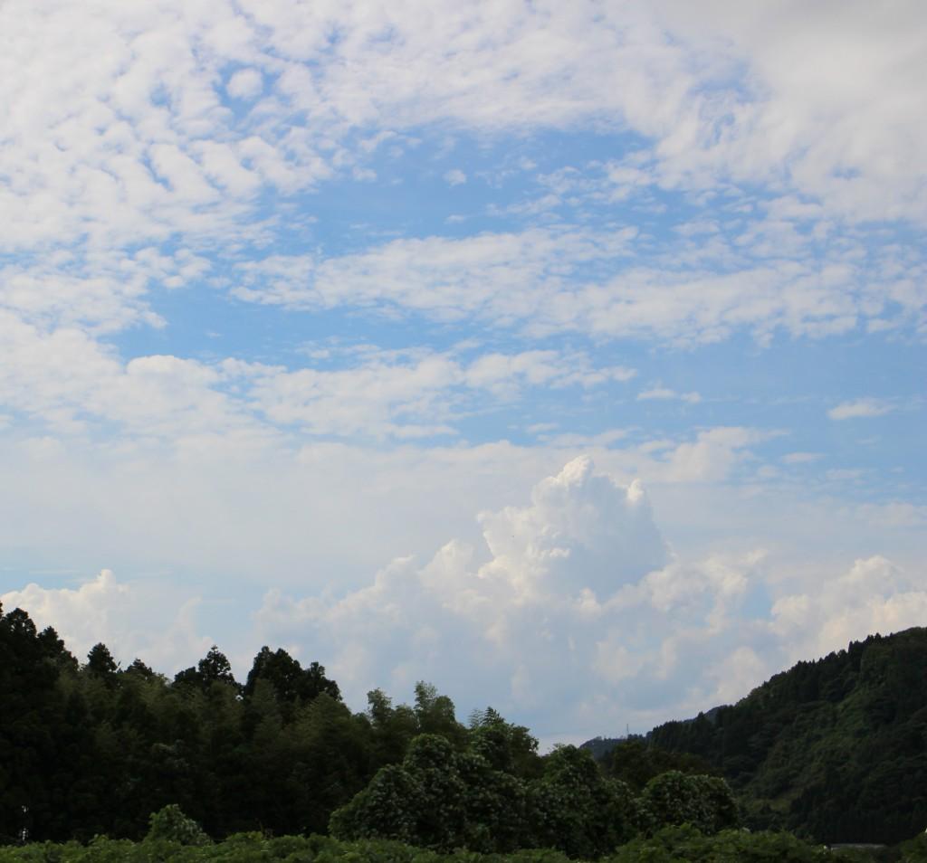 8月13日(日)〜16日(水)は夏季休業日とさせて頂きます。